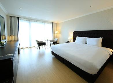 디럭스-호텔